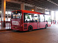 Bus img 9650 (16122440959).jpg