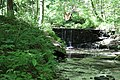 ButterMilk Falls Home of Mr. Rodgers - panoramio (38).jpg
