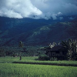 English: Mountains, rice fields and pile house...