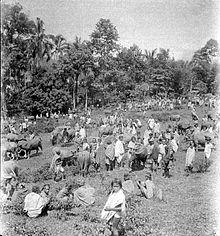 Kabupaten Tana Toraja Wikipedia Bahasa Indonesia Ensiklopedia Bebas