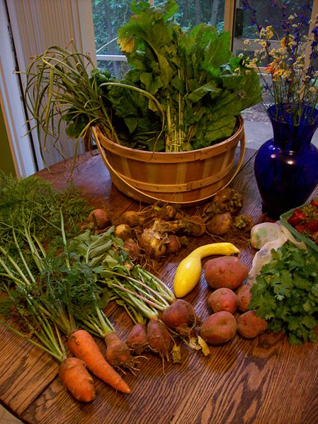 CSA Haul the First.jpg
