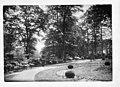 Ca. 1925 Augusta Victoria Garten - Doorn - 20059686 - RCE.jpg