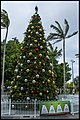 Cairns Christmas at the Esplanade-1 (15404884704).jpg