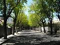 Calle en Mirasierra 2.JPG