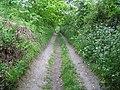 Calves Well Lane, West Runton, Norfolk - geograph.org.uk - 817304.jpg
