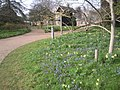 Cambridge University Botanic Garden - geograph.org.uk - 2325082.jpg