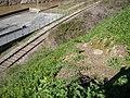 Camiño de ferro xunto Valeira - panoramio.jpg