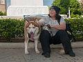 Caminata por los perros y animales Maracaibo 2012 (39).jpg