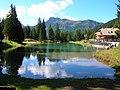 Canazei - lupo Bianco - panoramio.jpg