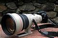 Canon EF 400 2.8.jpg