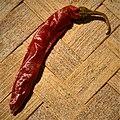 Capsicum annuum-Red Chilli Pepper 01.jpg