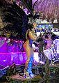 Carnaval 2014 - Rio de Janeiro (12992054884).jpg