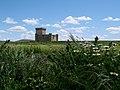 Castillo de Villalonso * Zamora (5865377126).jpg