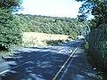 Castland Hill Woods - geograph.org.uk - 42973.jpg
