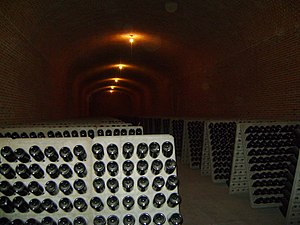 Mexican wine - Freixenet wine cellar in Querétaro