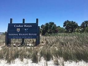 Cedar Keys National Wildlife Refuge.jpg