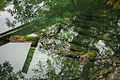 Cenote (3187976453).jpg