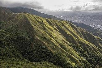 Climate of Venezuela - Image: Cerro El Avila