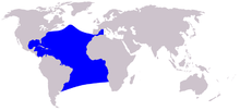 Description de l'image Cetacea range map Atlantic Spotted Dolphin.PNG.