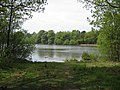 Chatsworth Grounds - Emperor Lake View - geograph.org.uk - 798391.jpg