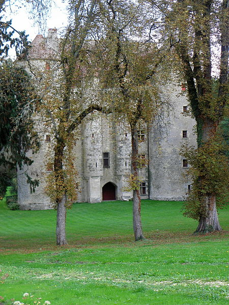 Château de Chevenon (58).