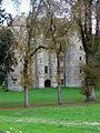 Chevenon (58) Château 01.JPG