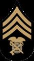 Chevron - Quartermaster Sergeant 1902-1909.png