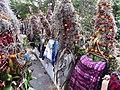 Chiapa de Corzo, Chis., Mexico - panoramio (3).jpg