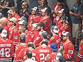 Chicago Blackhawks Rally 6-18-2015 (19005633289).jpg