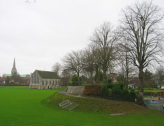 Rape (county subdivision) - Image: Chichester Castle remains