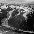 Chilkat Glacier, valley glacier with large moraines, August 30, 1964 (GLACIERS 5266).jpg