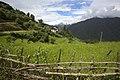Chuba, Punakha, Bhutan (12).jpg