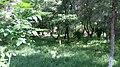 Circular-Park, Yerevan 17.jpg