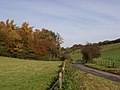 Clatford Bottom - geograph.org.uk - 278331.jpg