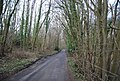 Clay Hill Rd through Brown's Wood - geograph.org.uk - 1759223.jpg