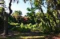 Clearwater,Florida,USA. - panoramio (130).jpg
