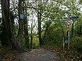 Coastal path - geograph.org.uk - 1033948.jpg