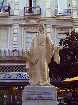 Columella - Statue of Columella, holding a sickle and an ox-yoke, in the Plaza de las Flores, Cádiz