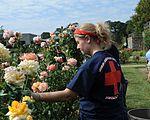 Community service in Norfolk 130912-N-HB951-043.jpg