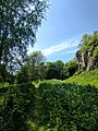 Creswell Gorge, Creswell Craggs, Notts (35).jpg