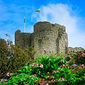 Criccieth Castle surrounded by flowers.jpg