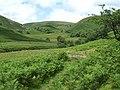 Cwm Doethie, Ceredigion - geograph.org.uk - 511600.jpg
