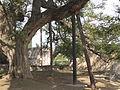 Cyprus - Kolossi castle 40.JPG