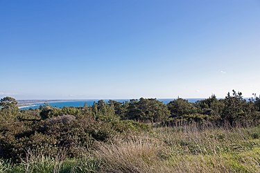 Cyprus south coast from the Sanctuary of Apollo Hylates.jpg