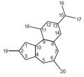 Dafnano - Numeración.png