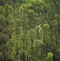 Dalby Söderskog - KMB - 16001000535911.jpg