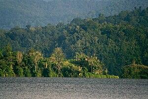 Lore Lindu National Park - Danau Lindu lake in the national park
