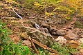 Dark Hollow Falls - HDR (15850765291).jpg