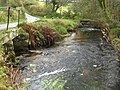 Dartmoor, West Webburn River - geograph.org.uk - 1025099.jpg