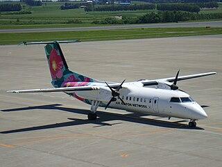 Air Nippon Network